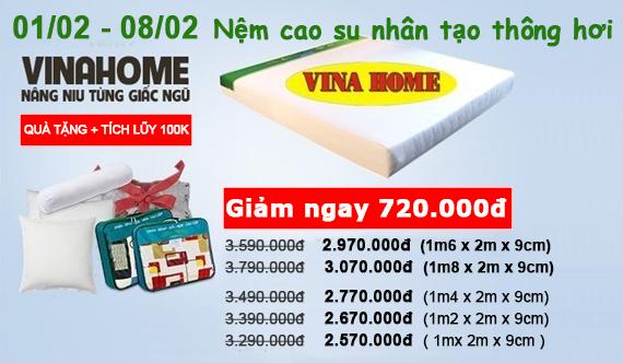 Nệm cao su nhân tạo thông hơi Vina Home 9cm thẳng